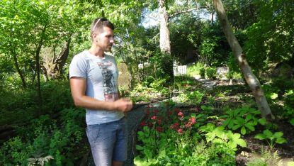 Ясен в своята сбъдната мечта - ботаническа градина