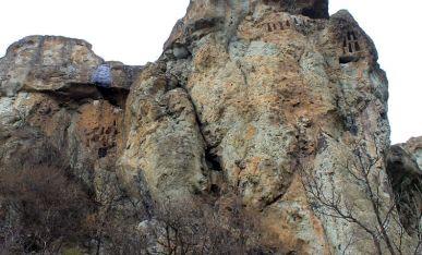 Kamaret ndodhen në lartësi deri më 50 m. mbi tokë.