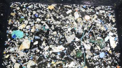 Островът от пластмаса е с площ 1,6 млн. кв. км