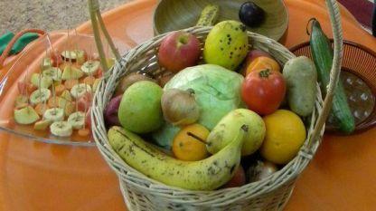 Плодове, зеленчуци и млечни продукти ще получават ежедневно и безплатно децата в 800 начални училища в Гърция.