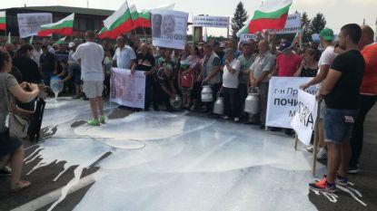 Протестът на овцевъдите край Арбанаси
