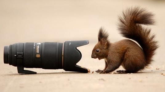 От днес до 26-и октомври в Пловдив започват Международните фотографски