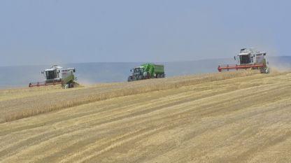 Асоциацията на зърнопроизводителите излиза с официална позиция в отговор на критиките на вицепремиера Красимир Каракачанов към сектора.