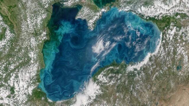 Цъфналият фитопланктон в Черно море