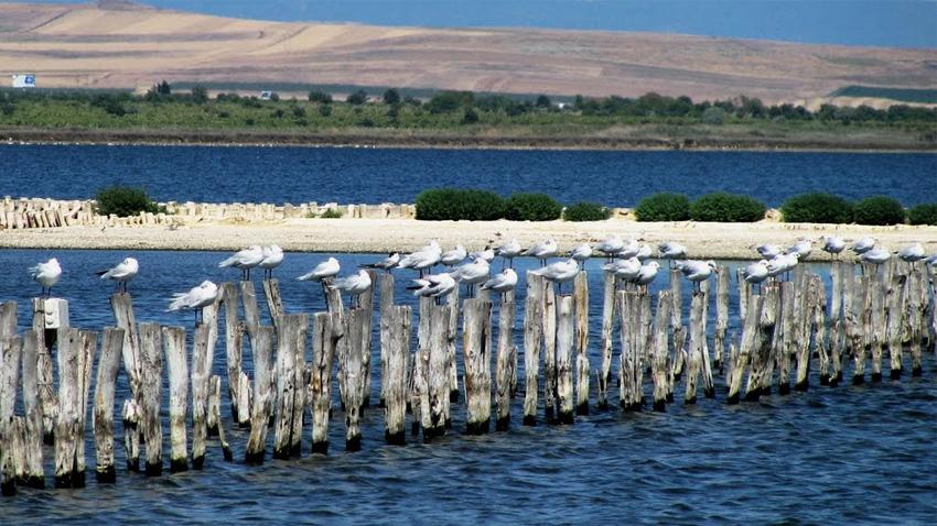 Η λίμνη του Πομόριε