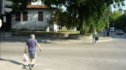 Клоните на дървото пречат на пресичащите да видят светофара на отсрещния тротоар.