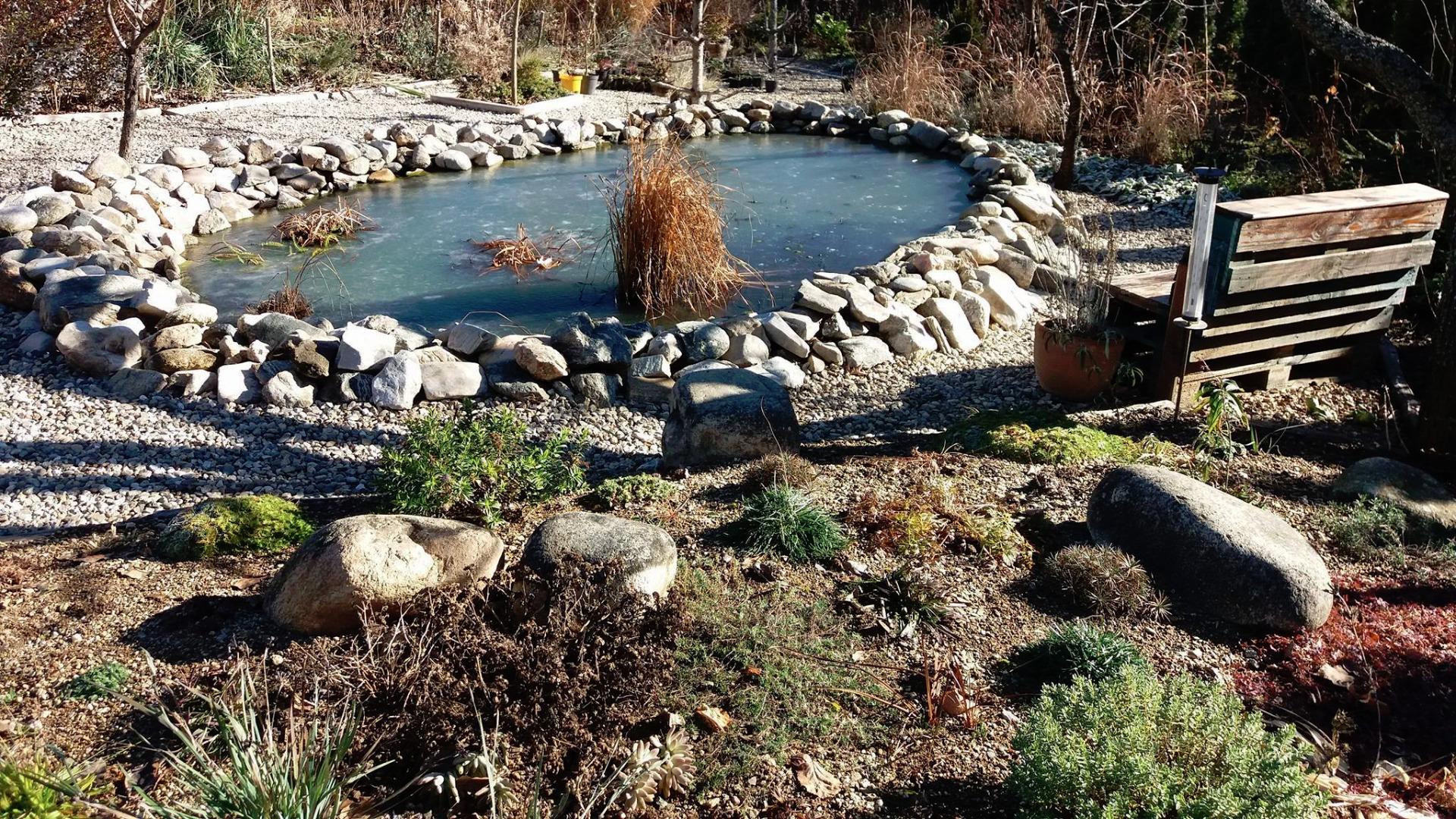 Ботаническа градина в ихтиманското село Борика