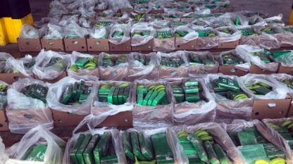 Пратката с банани, в която бил скрит кокаин за $89 млн., била предназначена за Антверпен, Белгия.