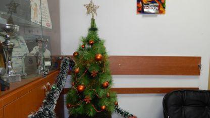 Коледната украса в Радио ВИДИН.