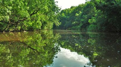 Разходката с лодка по река Ропотамо предлага среща с дивата природа на Странджа.