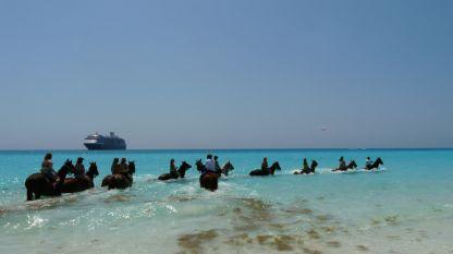 Удоволствието да яздиш кон на Бахамите