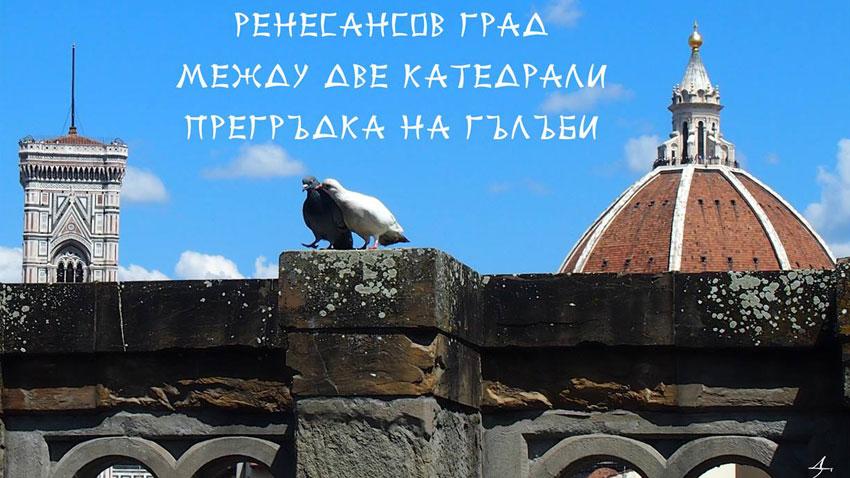 Една от 25-те снимки на Диляна Георгиева от експозицията