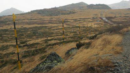 Витоша е най-посещаваната защитена територия в България