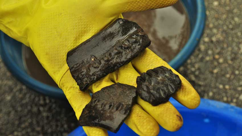 Фрагменти от керамични съдове, открити в халколитния град, който се счита за най-ранния на Стария континент.