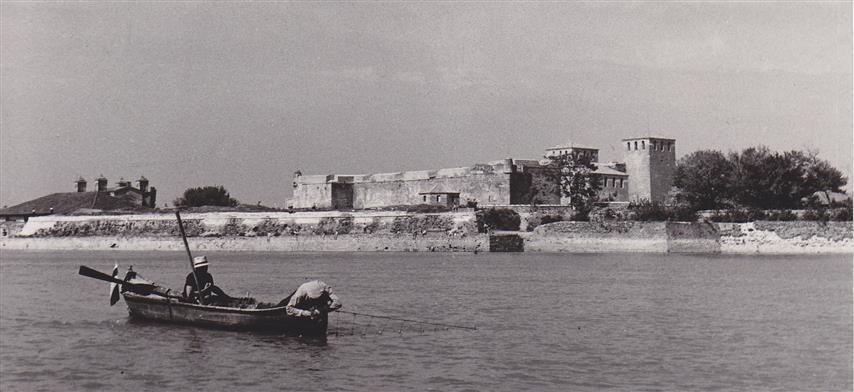 Баба Вида Видин, Държавен архив