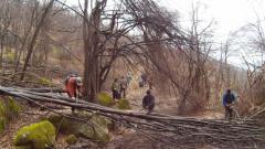 Ентусиасти в Белоградчик почистиха сами екопътека от паднали дървета