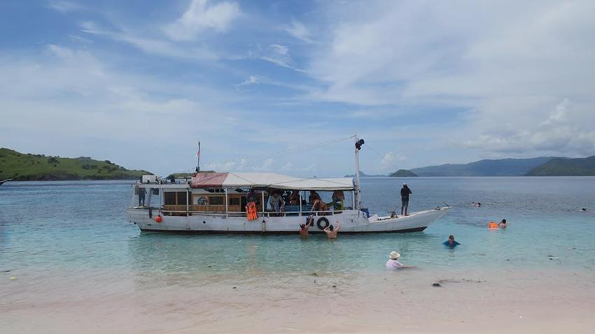 Плажът с розов пясък на Комодските острови