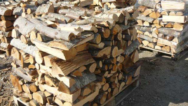 Дали има достатъчно дърва за огрев по фирмите и пунктовете