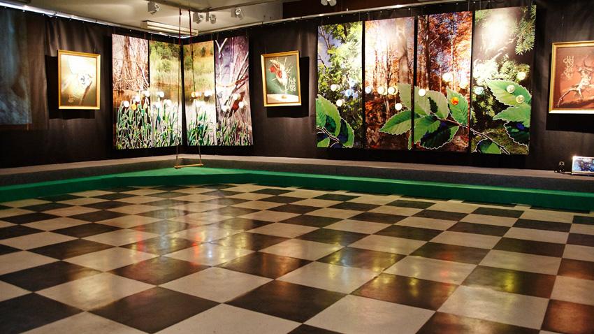 « Le mondes des insectes » - la nouvelle exposition du musée, mars 2014