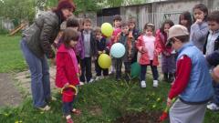 Деца и ученици по традиция засаждат дръвчета по случай Международния ден на Земята
