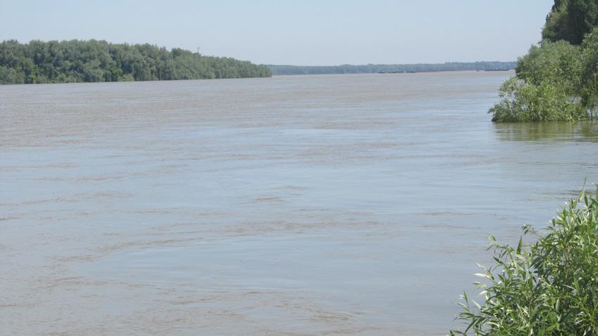 Дунавският драгажен флот е създаден преди 55 години по всички