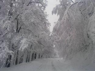 Странджа през зимата