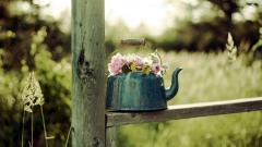 Да превърнем градината в красиво цветно кътче за отдих и разнообразие