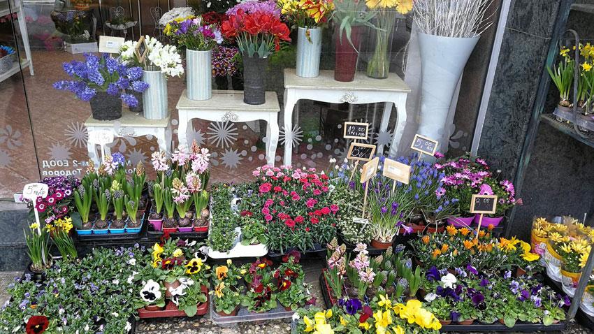И цветята излязоха на открито пред магазина