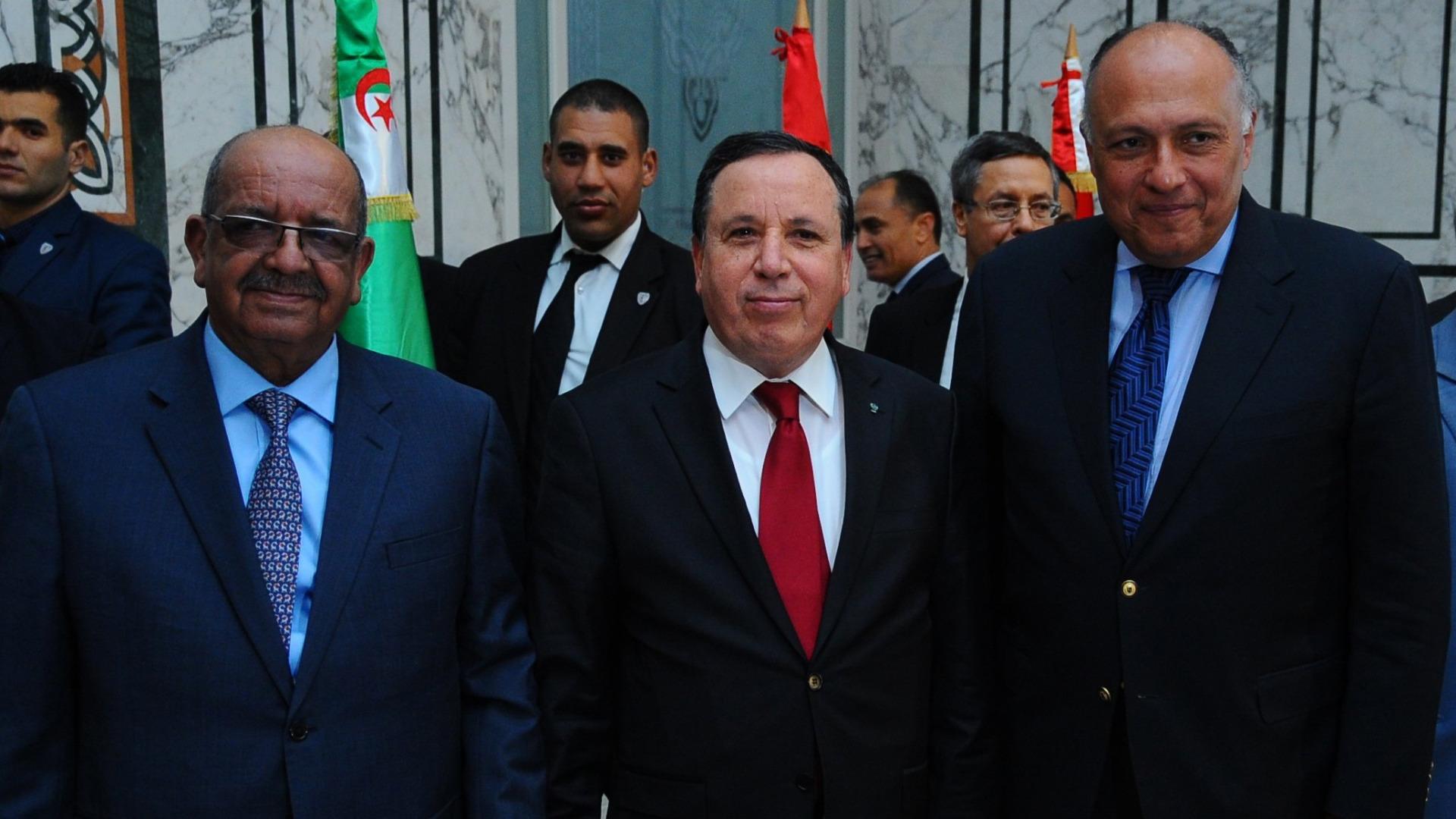 Външните министри на Алжир, Тунис и Египет