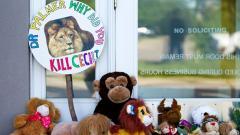 Надписът пред кабинета на зъболекаря, убил лъва Сесил, гласи:
