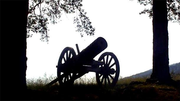Черешневая пушка
