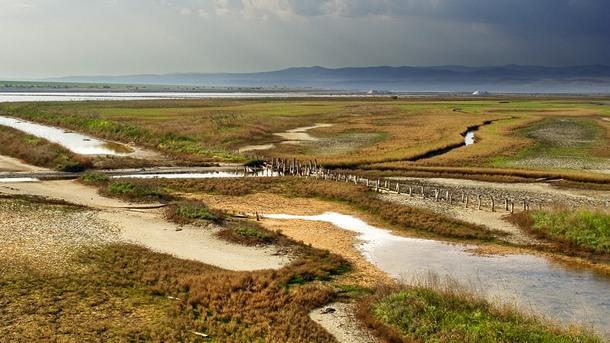 Атанасовско езеро край Бургас като уникална екосистема е сред финалистите в престижния конкурс