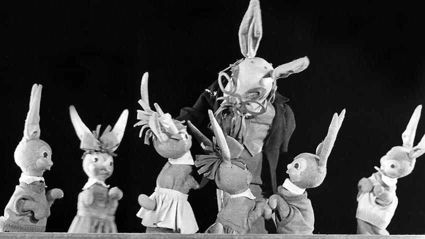Ecole pour lapins, 1959