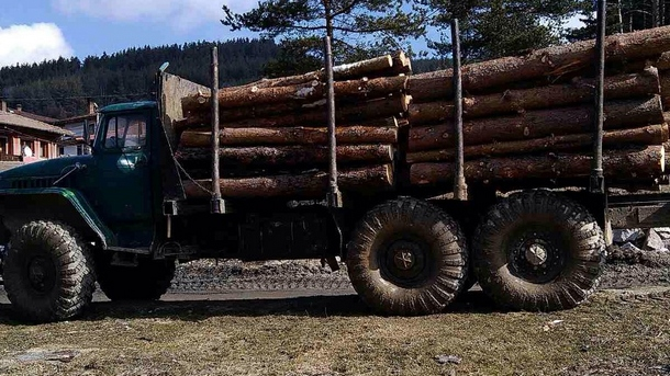 Големи количества незаконна дървесина задържаха служители на Югозападното държавно предприятие