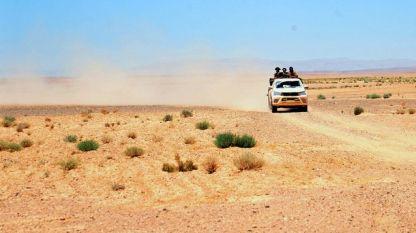 Израел използва бактерии и за разграждане на солите около маслинови дървета в пустинята Негев.