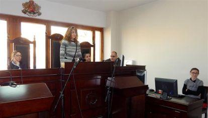 Административен съд Видин