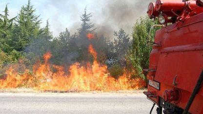Пожарите са потушени