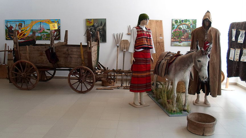 Muzeu i gomarit