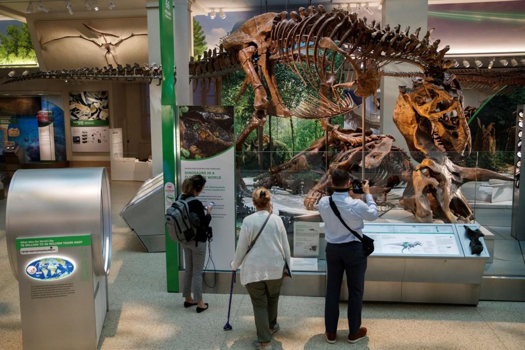 """Посетители снимат в """"Залата на вкаменелостите"""" в Националния природонаучен музей на Института Смитсониън във Вашингтон – показан е тиранозавър, нападащ трицератопс."""