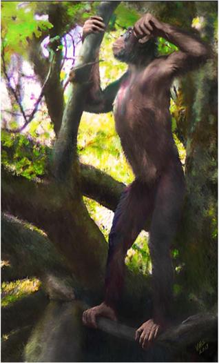 Реконструкция на изчезналия вид маймуна Danuvius guggenmosi
