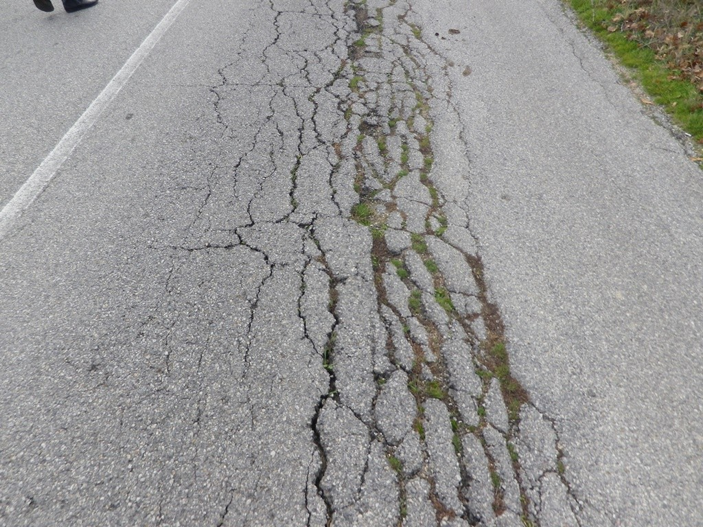 В края на ноември 2017 година Агенция пътна инфраструктура предостави