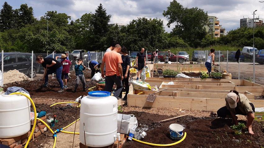 Споделената зеленчукова градина вече функционира Снимка: Сдружение Горичка