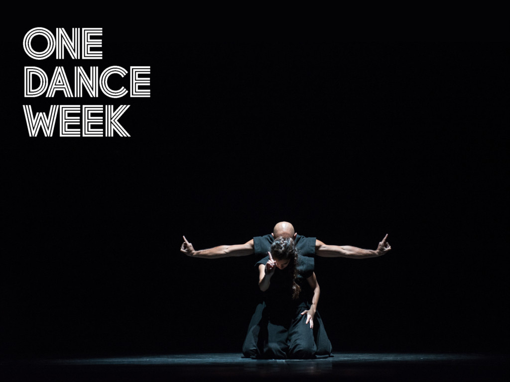 11-тото издание на международния фестивал за съвременен танц и пърформанс
