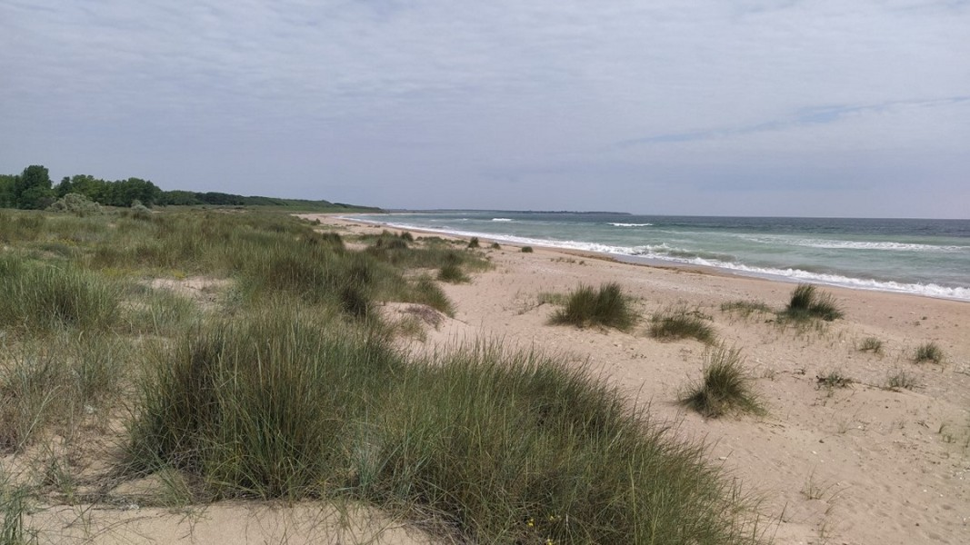Плаж край Шабла            Снимка: Мая Щърбанова