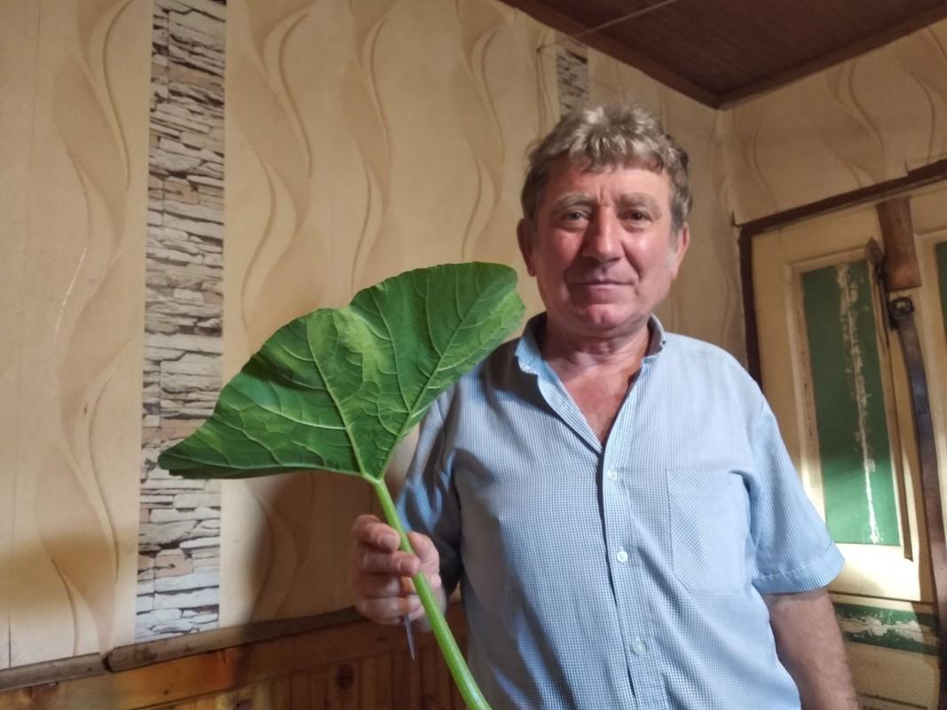 Иван Алексиев - Байо