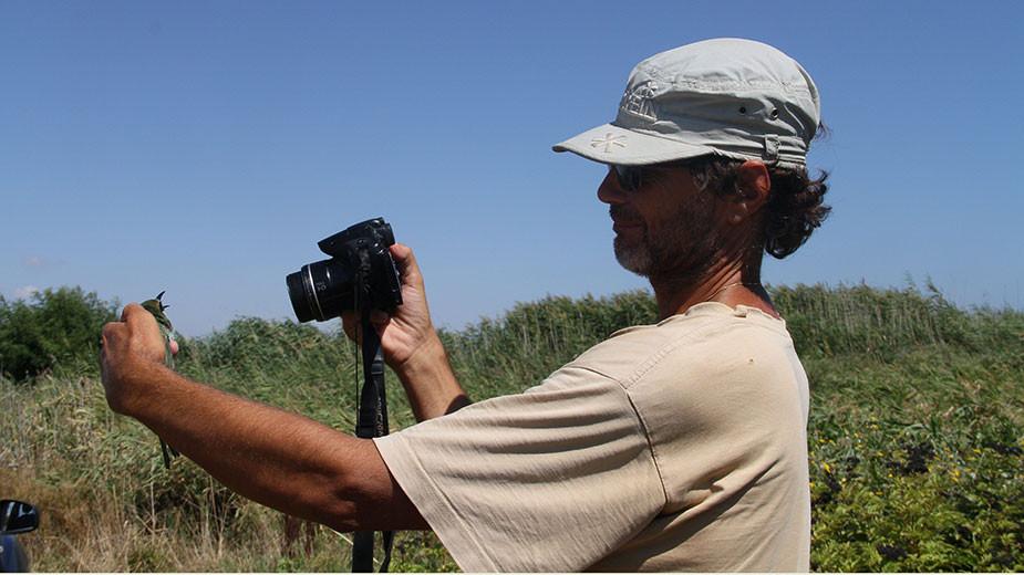 Доц. Петър Шурулинков с пчелояд в ръце. Фотограф: Оля Стоянова