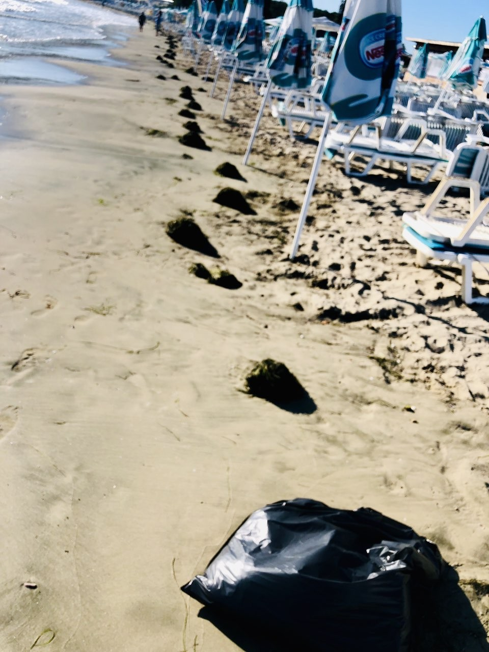 Почистени водорасли в Крайморие