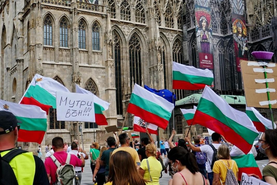 Протест във Виена    Снимка: @rosi.mihova