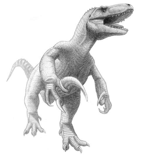 Реконструкция на Megaraptor namunhuaiquii  Изображение: Jordan Mallon, Уикипедия