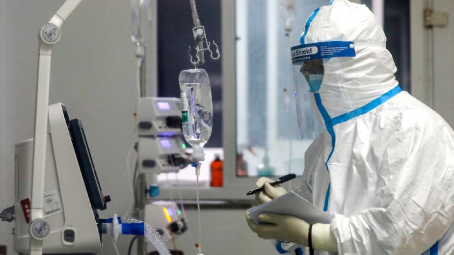 Първи случаи на коронавирус в България - Регионални новини